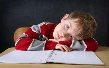chomu ditina ne hoche vchitisja ta jak zaraditi situaciyi poradi vid svitlani rojz 3afdfb8 - Чому дитина не хоче вчитися та як зарадити ситуації: поради від Світлани Ройз